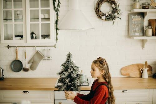 Gratis stockfoto met aanrecht, binnenshuis, decor, decoratie