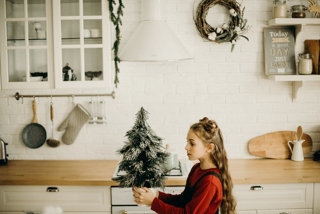 Girl Holding A Little Christmas Tree Decor