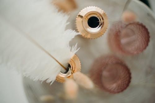 Fotobanka sbezplatnými fotkami na tému atrament, biela, brko, dekorácia