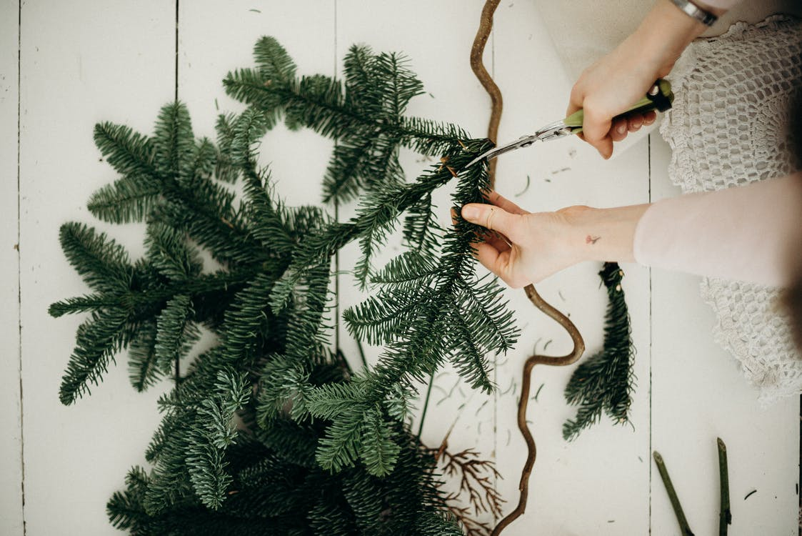 Woman Cutting Some Leaves Of A Christmas Tree