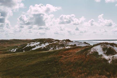 Free stock photo of beach, denmark, dunes