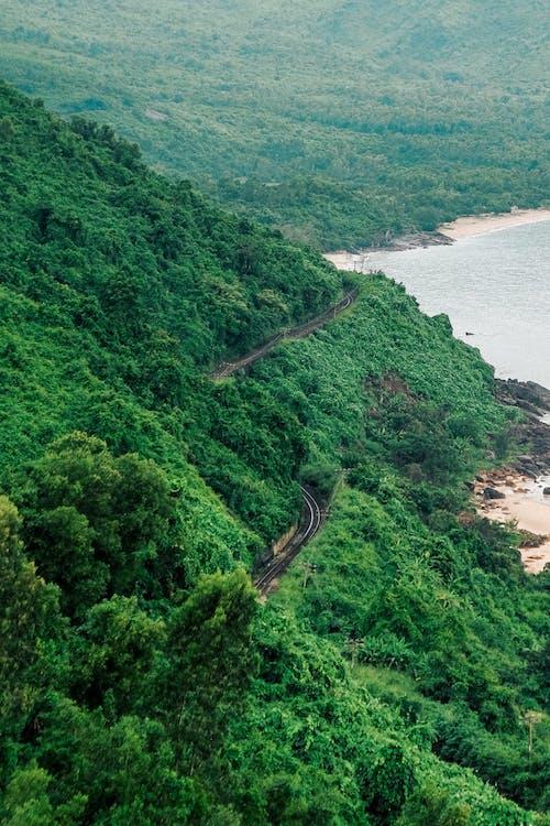 녹색, 바다, 산, 철도의 무료 스톡 사진