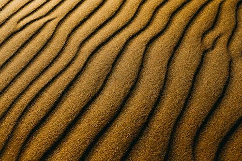 Foto d'estoc gratuïta de arrugat, desert, dunes de sorra, estampat