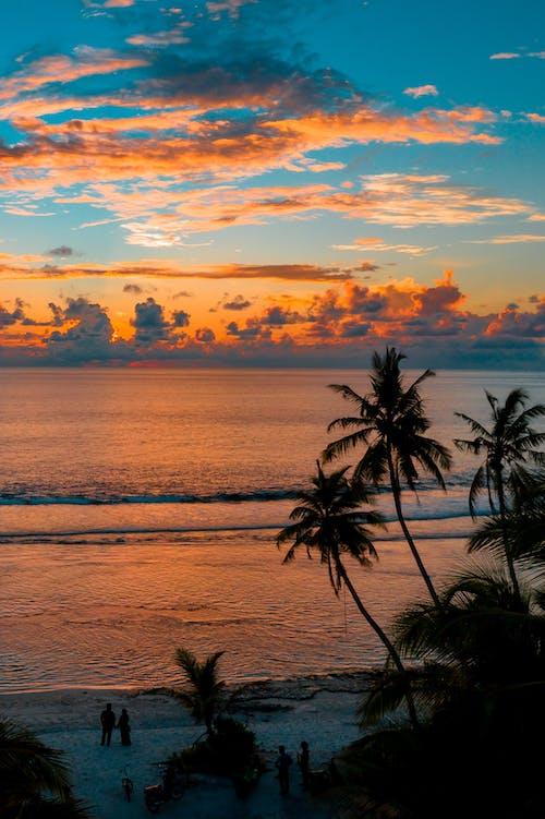 Бесплатное стоковое фото с восход, закат, индийский океан, курорт