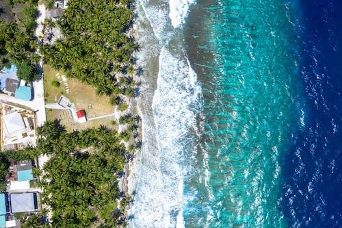 Fotobanka sbezplatnými fotkami na tému farba, indický oceán, leto, letovisko