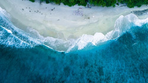 Aerial Photography of People on Seashore