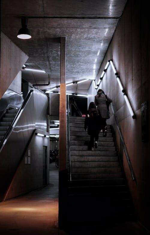 Ilmainen kuvapankkikuva tunnisteilla auton valaisin, jarruvalo, kattovalot, kaupunkialue