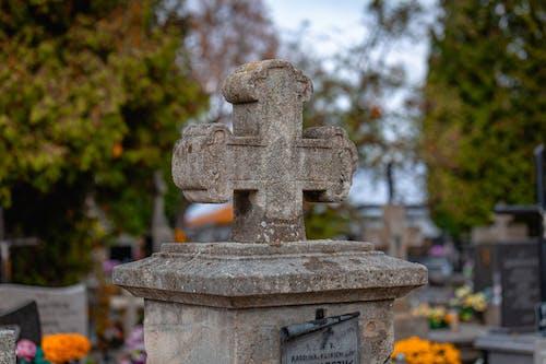 Photos gratuites de ancien, automne, cimetière, croix