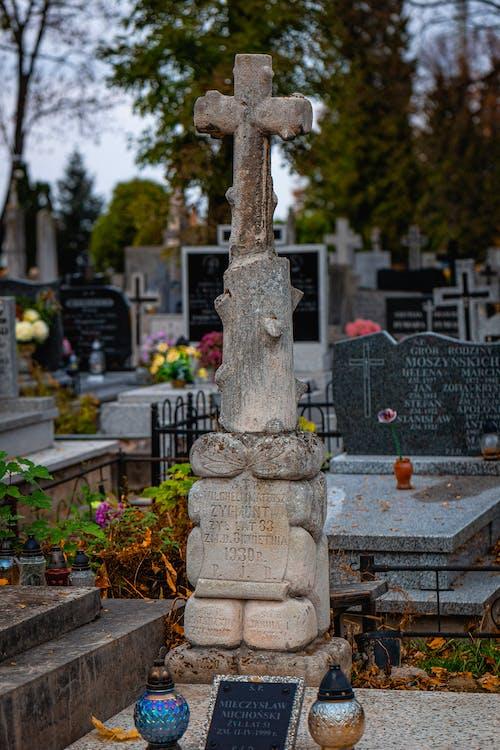 Photos gratuites de automne, bois, cimetière, croix