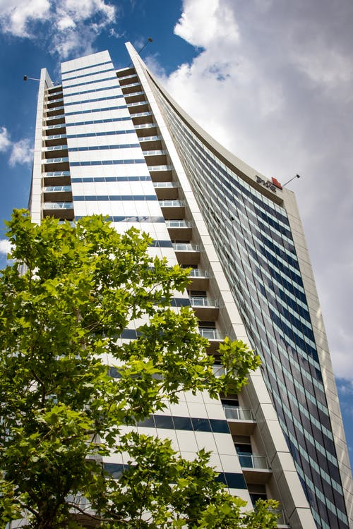 Low Angle Photo of High-Rise Building Near Green-Leafed Tree
