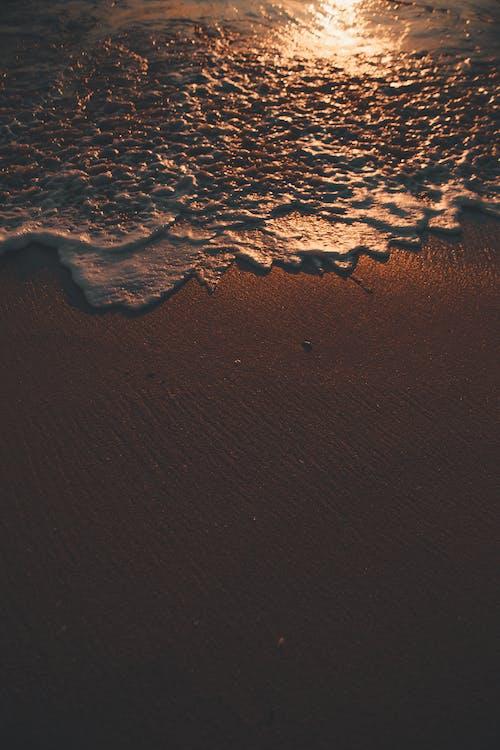 Gratis arkivbilde med hav, havkyst, kyst
