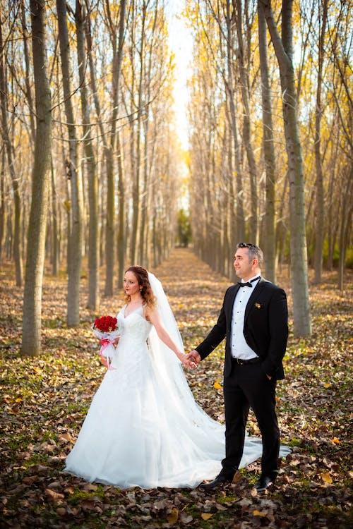 Бесплатное стоковое фото с #models, болотные птицы, свадьба, скоростная фотосъемка