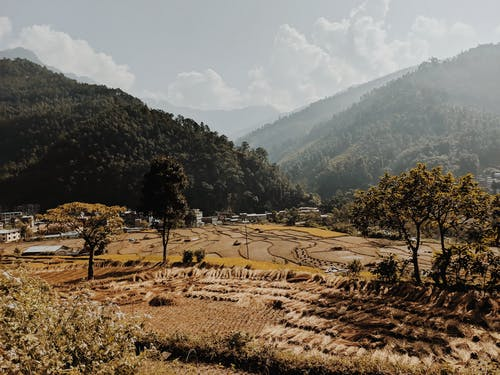 Ilmainen kuvapankkikuva tunnisteilla kenttä, luonto, maaseudun, maaseutu