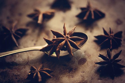 Free stock photo of anise, Dry spice, spice
