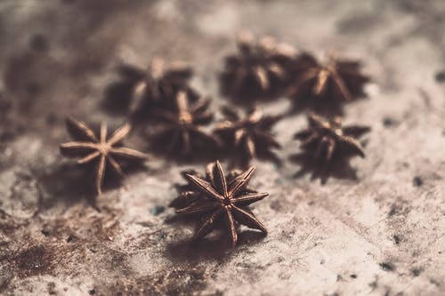 Shallow Focus Photo of Star Anise on Brown Pavement