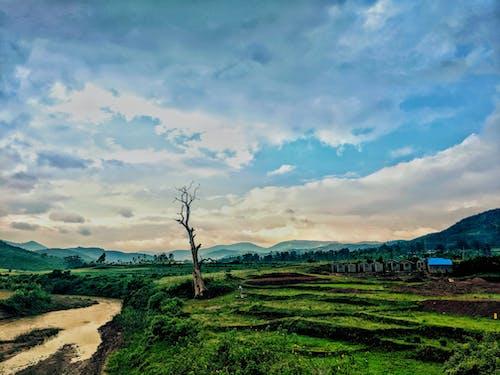 Бесплатное стоковое фото с вид на долину, горы, долина