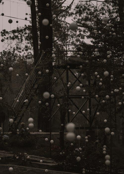 Monochromes Foto Von Hängenden Kugeln