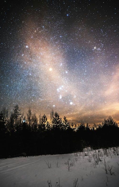 Ảnh lưu trữ miễn phí về hành tinh, hình ngôi sao, mùa đông, Thiên nhiên