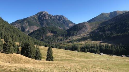 Kostnadsfri bild av bergen, tatry