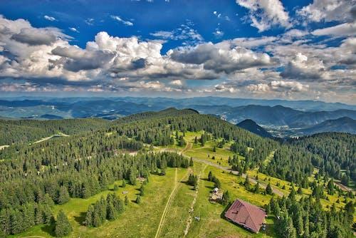 乾草地, 乾草田, 假期, 健行 的 免費圖庫相片