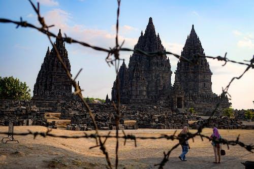 Foto d'estoc gratuïta de destinació de viatge, entrada del temple, hinduisme, humà