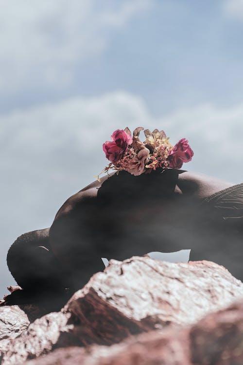 Imagine de stoc gratuită din floră, flori, persoană, spate