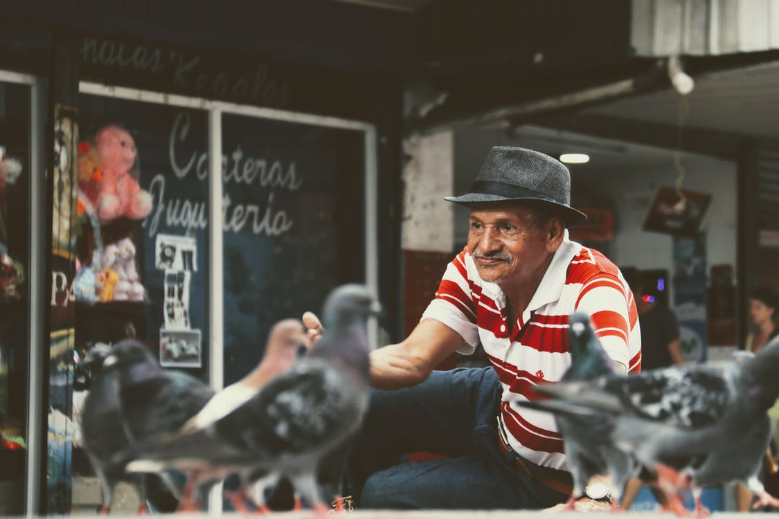 Man Sitting Beside Pigeons