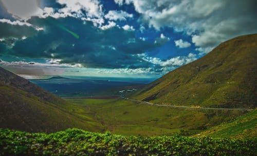 Immagine gratuita di paesaggio, verde