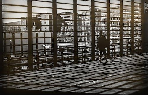 Immagine gratuita di finestre, luce e ombra, uomo
