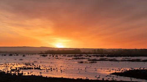 Photos gratuites de lac, lever de soleil, lever du soleil, soleil levant