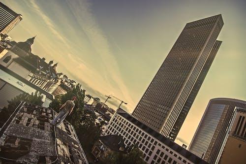 Immagine gratuita di edificio a molti piani, tetto