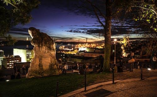 Foto profissional grátis de estátua, noite, quadrado, vida noturna