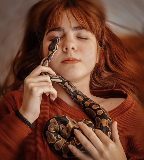 Foto profissional grátis de arriscado, atraente, cobra, mulher