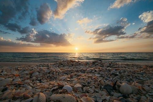 Fotos de stock gratuitas de agua, aguas calmadas, amanecer, arena