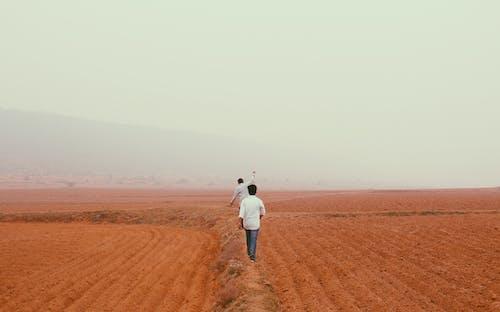 açık hava, alan, arkadan görünüm, Çiftlik içeren Ücretsiz stok fotoğraf