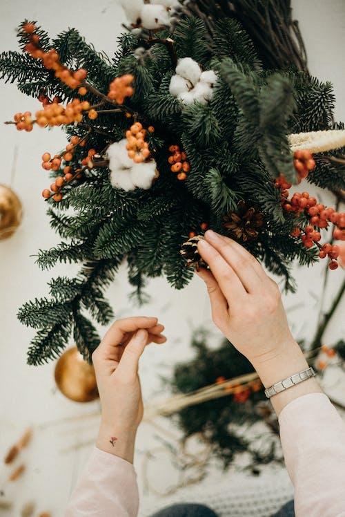 คลังภาพถ่ายฟรี ของ การจัดดอกไม้, การตกแต่ง, ของตกแต่งวันคริสต์มาส, คน