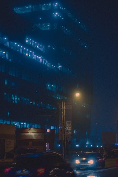 Free stock photo of citylights, fog, night