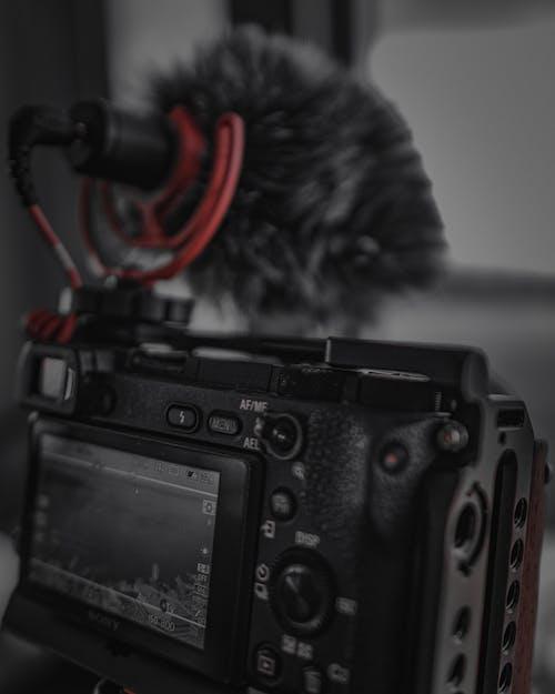 Immagine gratuita di cinema, fotocamera, fotografia, microhphone