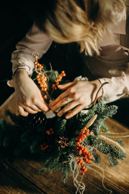 Immagine gratuita di arte, composizione floreale, decorando, decorazione natalizia