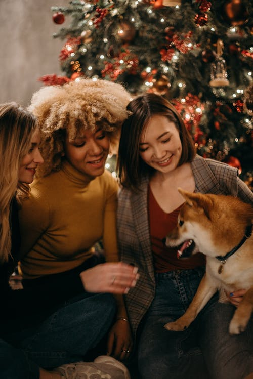 Selective Focus Photography of Three Smiling Women Looking at White and Brown Dog