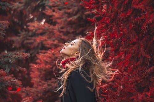 düşmek, güzel, Kadın, kişi içeren Ücretsiz stok fotoğraf