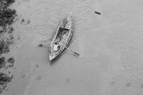 Free stock photo of boats, Ganga, india