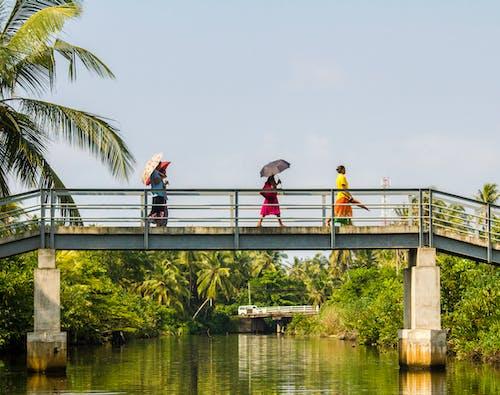 Free stock photo of bridge, culture, negombo
