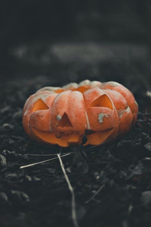 Orange Jack-'o-lantern