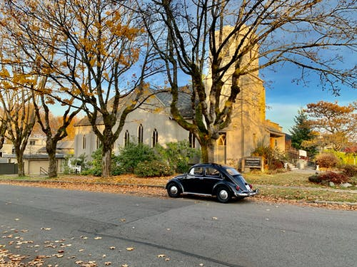 Free stock photo of autumn, beetle, car, church