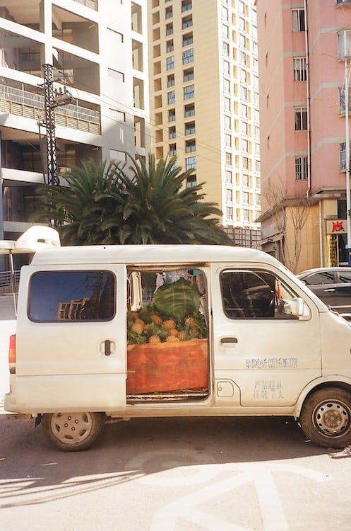 car, fruits, olympus
