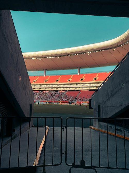 Darmowe zdjęcie z galerii z boisko piłkarskie, futbol, piłka nożna, stadion