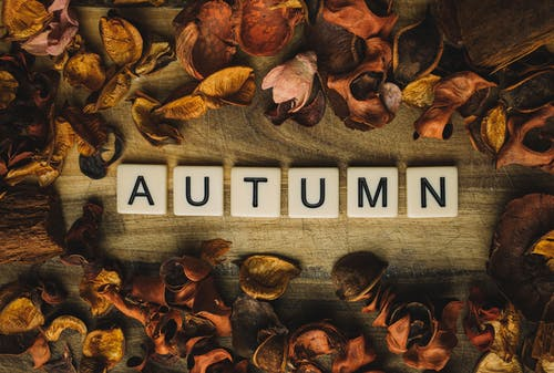 Autumn Word Surrounded With Leaves