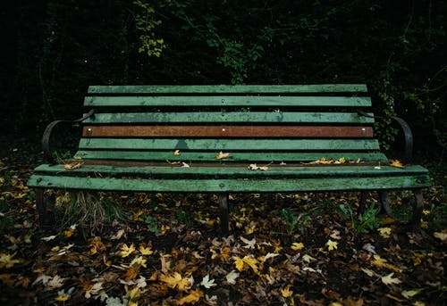 Free stock photo of bench, empty, lonely