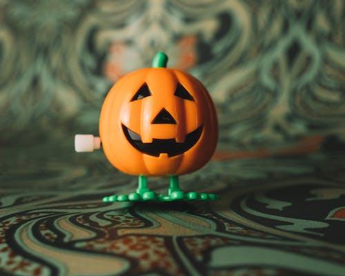 Free stock photo of fun, pumpkin, toy